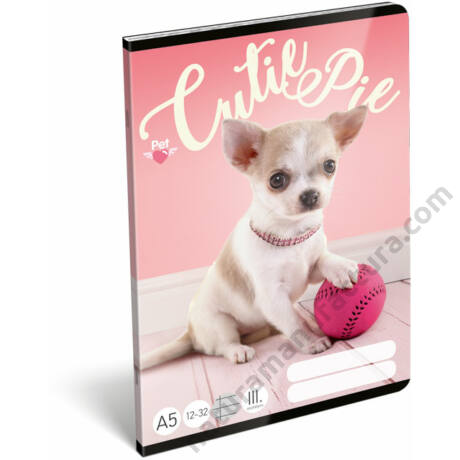 Pet Cutie Pie kutyás 3. osztályos vonalas füzet